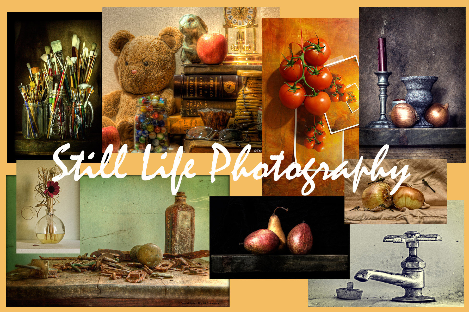 Still Life Photogrophy